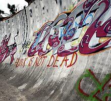 Punk's not dead. Olympic bobsled run, Sarajevo by Bob Ramsak