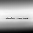 Trio - Crosshaven Co. Cork by Pascal Lee (LIPF)