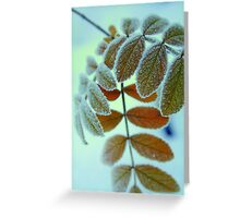 wintry #2 Greeting Card