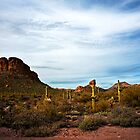 Apache Trail Red Rock by Lee Craig