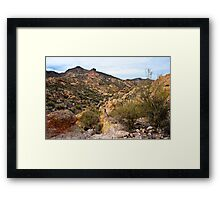 Dressed in Yellow Apache Trail Framed Print