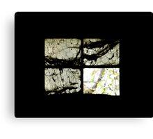 Window Screen Canvas Print