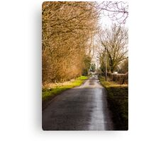 Road to nowhere  Canvas Print