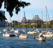 Moorings on the Brisbane River by Renee Hubbard Fine Art Photography