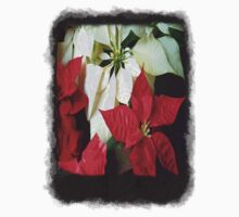 Mixed Color Poinsettias 2 Blank P4F0 Kids Tee