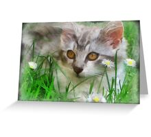 Adorable Neighborhood Kitten Greeting Card