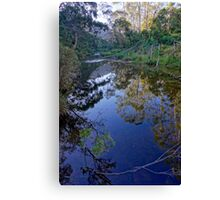 Lerderderg River Canvas Print