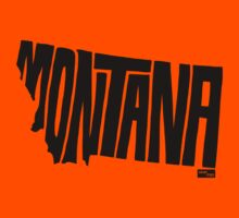 Montana State Type 1 by seanings