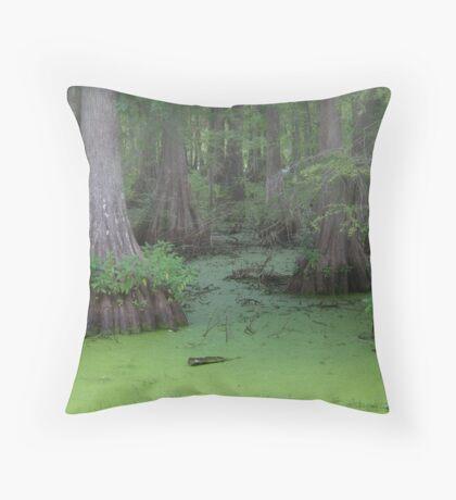 Misty Green Swamp Throw Pillow