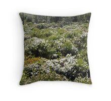 Boronia Mount Field NP - Peter Throw Pillow