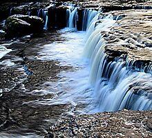 Aysgarth Falls by Irene  Burdell