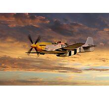 P-51 Ferocious Frankie Photographic Print