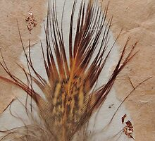 Pheasant Feather Art by Alexandra Lavizzari