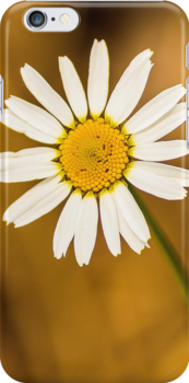 Daisy phone case by John Velocci