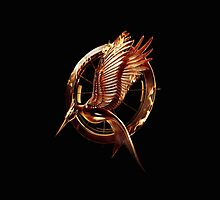 The Hunger Games: Catching Fire Logo by andthebirdssing