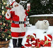 Snowdrop & Santa by Morag Bates
