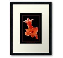 Gladiolus Sculpture Framed Print