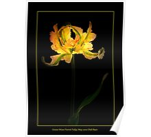 Green Wave Parrot Tulip Poster