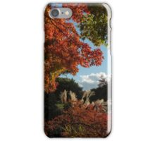 Color and texture naturally blended iPhone Case/Skin