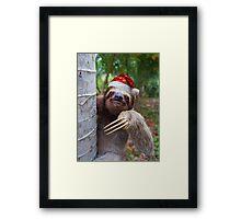 Christmas animal sloth wearing santa hat Framed Print