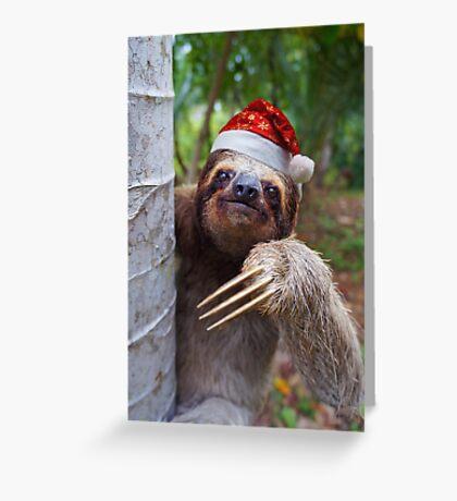 Christmas animal sloth wearing santa hat Greeting Card