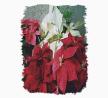 Mixed color Poinsettias 3 Kids Tee
