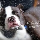 I'm Dreaming of a White Christmas by Susan Werby