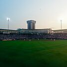 Hammons Field by Hayely Queen