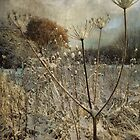 Winter in the Meadow by Sarah Jarrett