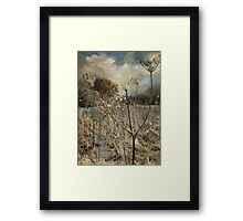 Winter in the Meadow Framed Print
