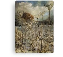 Winter in the Meadow Canvas Print