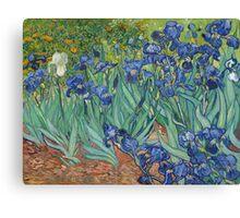 Vincent Van Gogh - Irises.  Van Gogh - Irises Impressionism Flowers 1889 Canvas Print