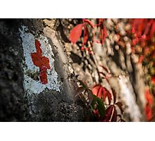 red cross Photographic Print