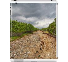 Dirt road through dwarf pines iPad Case/Skin