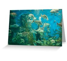 Cool Aquarium Greeting Card