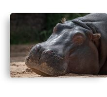 Wake Me When Its Over Canvas Print