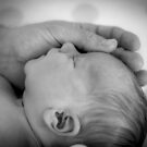 A Father's Loving Touch by Mikell Herrick