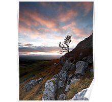Twistleton Tree, Ingleton, North Yorkshire Poster
