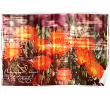 Abstract flower orange Poster
