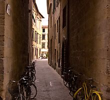 Lucca, Italy by donberry