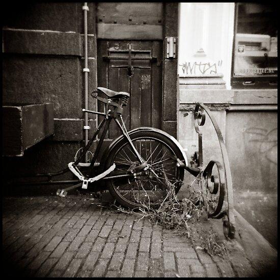 { rust + dust } by Lucia Fischer