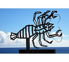 Jameos del Agua Lobster Photographic Print