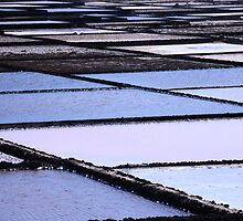 Salt Fields Lanzarote by Franglais