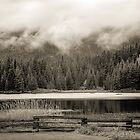 Infrared of Lost Lake, Whistler by Quentin Jarc