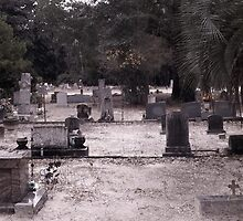 Graves of Family Artistic Photograph by Shannon Sears by twobrokesistas