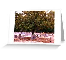 Tree of After Life Artistic Photograph by Shannon Sears Greeting Card