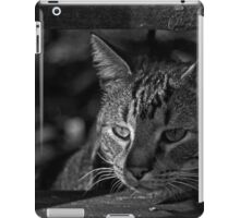 Serious Business iPad Case/Skin