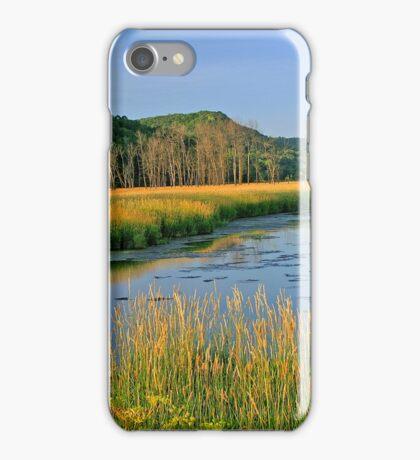 Evening Gold iPhone Case/Skin