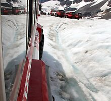 Icefields Bus by Camilla