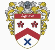 Agnew Coat of Arms/Family Crest by William Martin